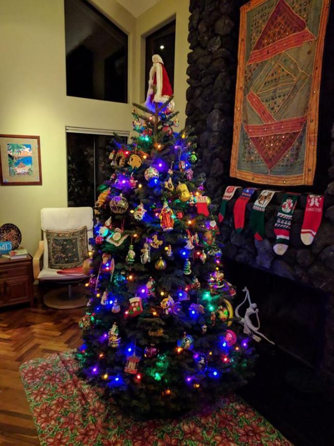 Christmas tree 2017 A