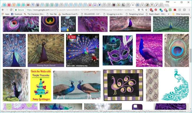 Google results for purple peacock